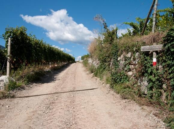 Eisacktaler Wein- und Apfelweg