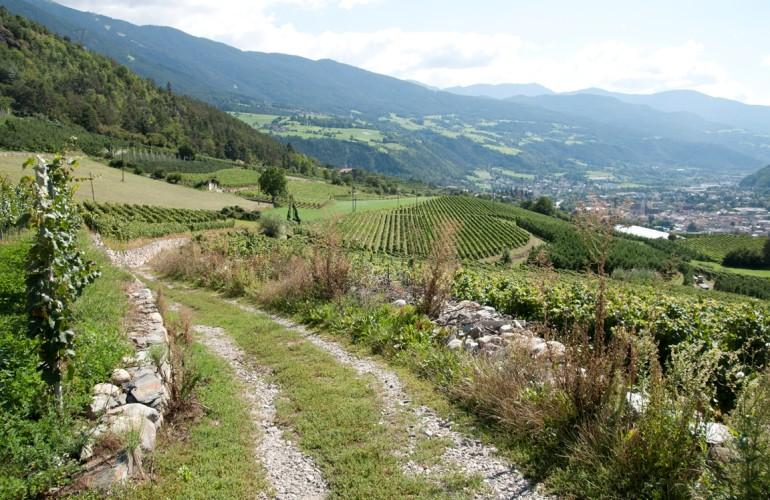 Der Blick auf Brixen  ist fantastisch