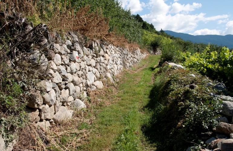 Alte Trockenmauern zeugen von der langen Nutzung